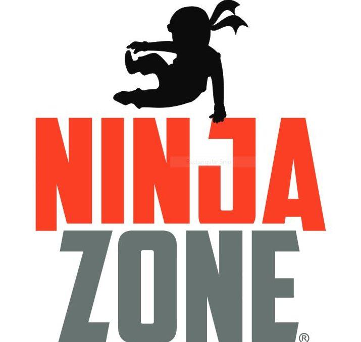 Ninja Zone Program